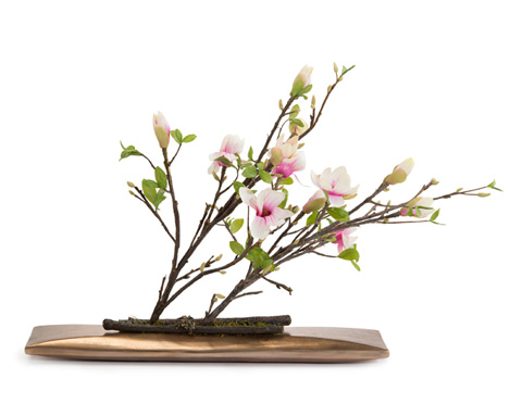 John Richard Collection - Japanese Magnolias - JRB-3511