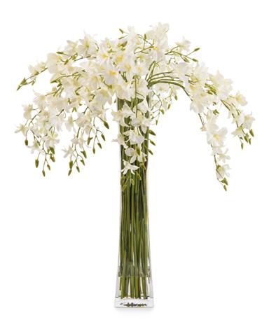 John Richard Collection - Towering Dendrobiums - JRB-3517W