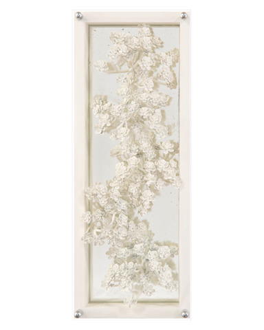 John Richard Collection - Ivory Succulents IV - GBG-1215D