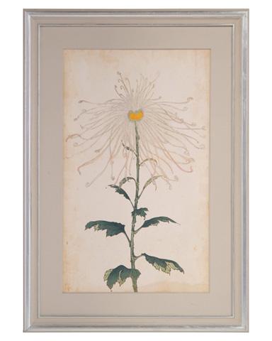 John Richard Collection - Elegant Crysanthemums II - GRF-5659B