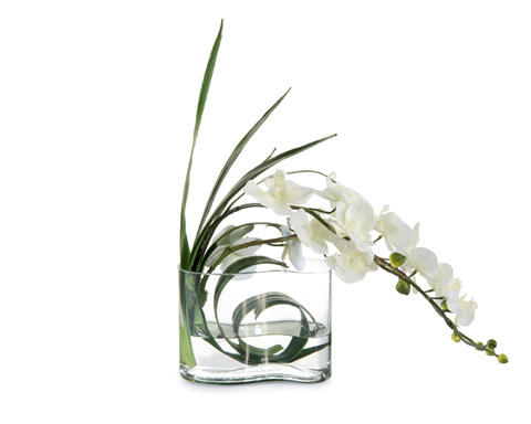 John Richard Collection - Wave Orchid - JRB-3607W