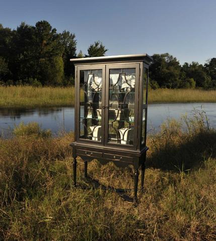Image of Santee Delta Display Cabinet
