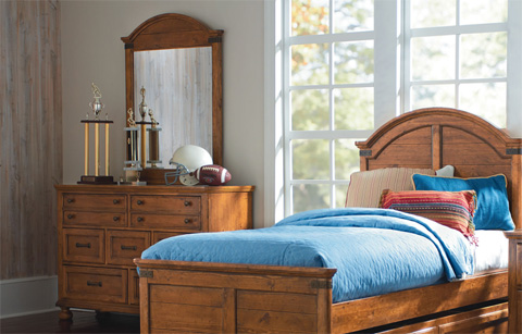 Legacy Classic Furniture - Dresser with Mirror - 3900-0100/1100
