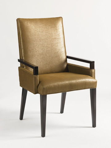 Image of Vision Arm Chair
