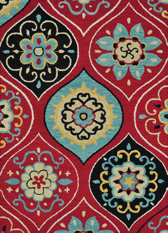 Image of Red and Multi Rug