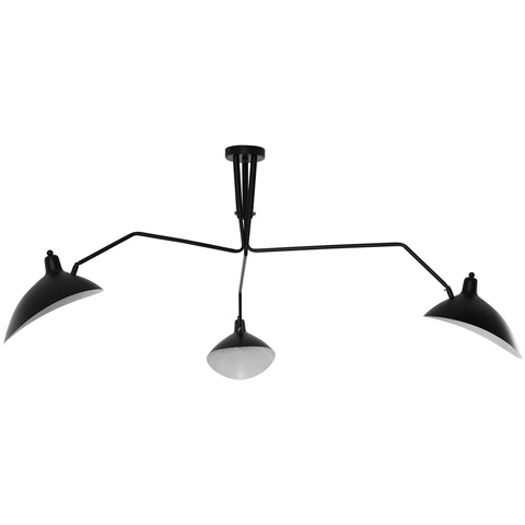 Image of View Ceiling Fixture in Black