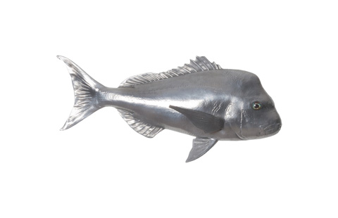 Phillips Collection - Australian Snapper Fish in Polished Aluminum - PH64556