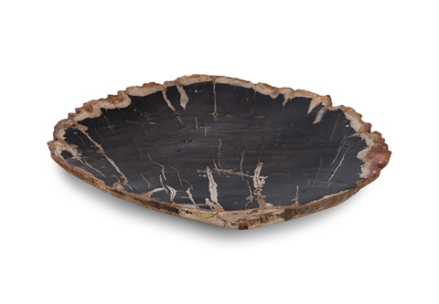 Phillips Collection - Petrified Wood Plate - ID68744