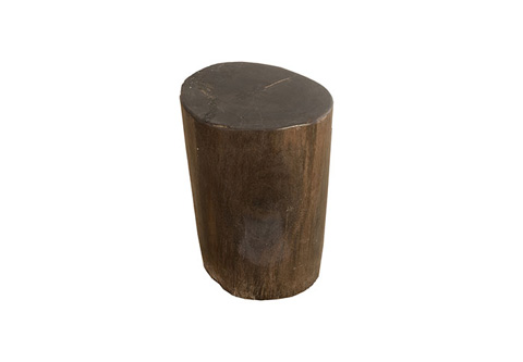 Phillips Collection - Petrified Wood Stool - ID73744