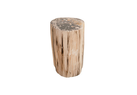 Phillips Collection - Petrified Wood Stool - ID73755