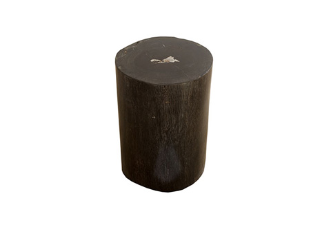 Phillips Collection - Petrified Wood Stool - ID73756