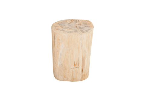 Phillips Collection - Petrified Wood Stool - ID73760