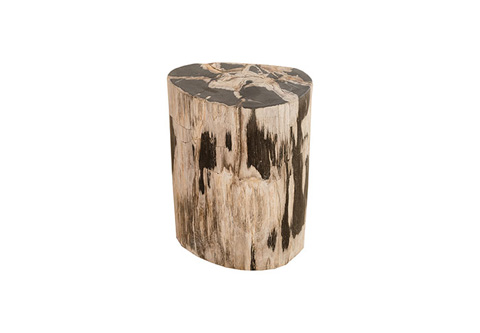 Phillips Collection - Petrified Wood Stool - ID73805