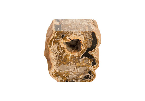 Phillips Collection - Petrified Wood Stool - ID73968