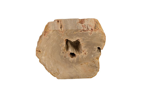 Phillips Collection - Petrified Wood Stool - ID73970