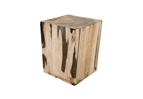 Phillips Collection - Petrified Wood Stool - ID73985