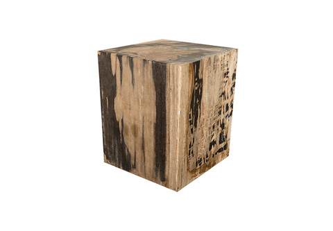 Phillips Collection - Petrified Wood Stool - ID73989