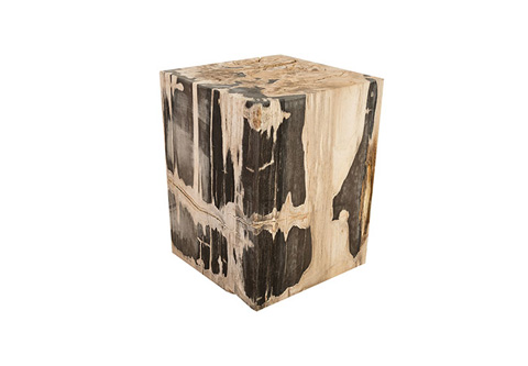 Phillips Collection - Petrified Wood Stool - ID73990