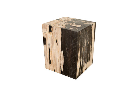 Phillips Collection - Petrified Wood Stool - ID74004