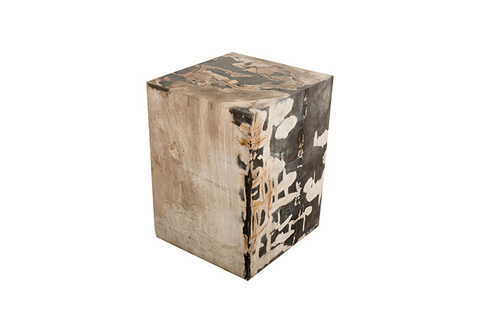 Phillips Collection - Petrified Wood Stool - ID74011