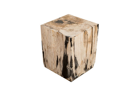 Phillips Collection - Petrified Wood Stool - ID74016