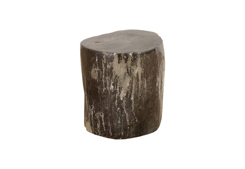 Phillips Collection - Petrified Wood Stool - ID74057