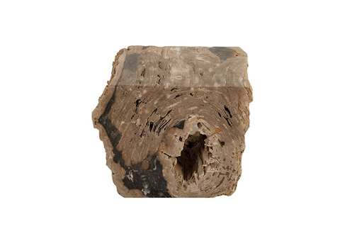 Phillips Collection - Petrified Wood Stool - ID74206