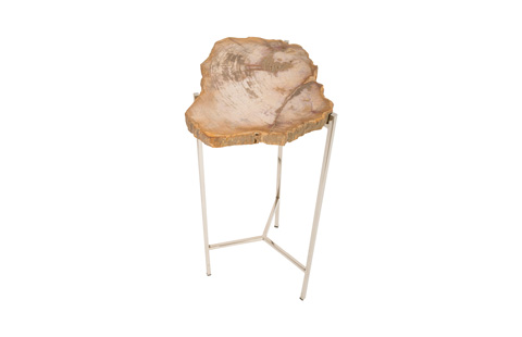 Phillips Collection - Petrified Wood Side Table - ID74250
