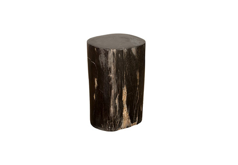 Phillips Collection - Petrified Wood Stool - ID74595