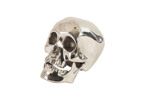 Phillips Collection - Skull - ID75463