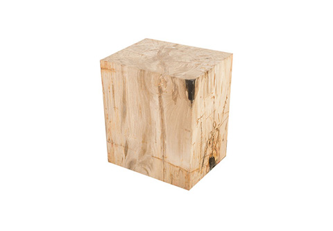 Phillips Collection - Petrified Wood Stool - ID76211