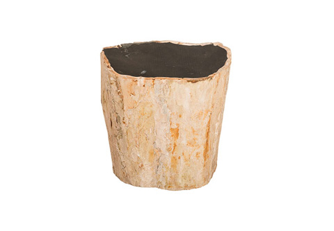 Phillips Collection - Petrified Wood Stool - ID76945