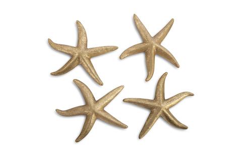 Phillips Collection - Starfish - PH67529