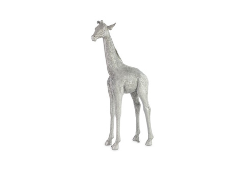 Phillips Collection - Baby Giraffe - PH67592