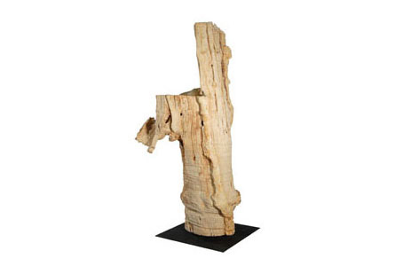 Phillips Collection - Driftwood on Stand - TH56563