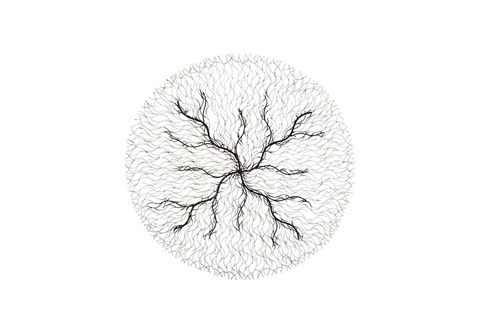 Phillips Collection - Wire Root Wall Art - ID78293