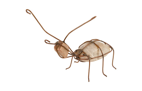Phillips Collection - Ant - TH79023