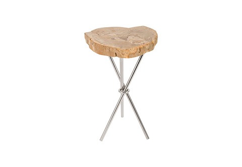 Phillips Collection - Petrified Wood Side Table - ID73823