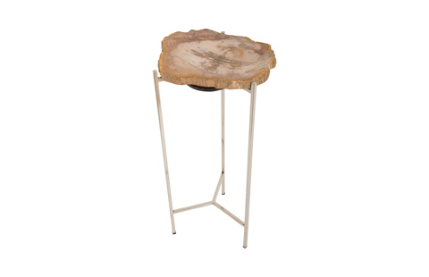 Phillips Collection - Petrified Wood Side Table - ID74248