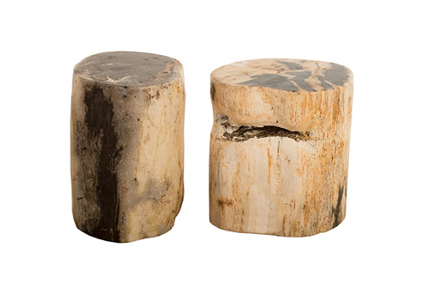 Phillips Collection - Petrified Stool - ID77953
