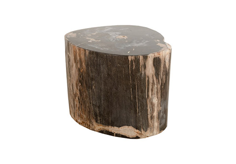 Phillips Collection - Petrified Stool - ID77997