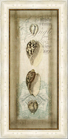 Picture Source, The - Cartouche & Shells I - CWG101A