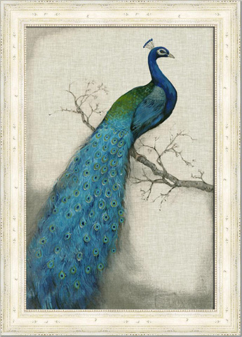 The Picture Source - Embellished Peacock I - CWO101A