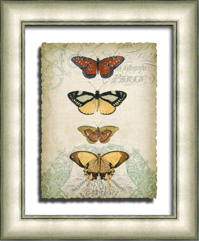 The Picture Source - Cartouche & Butterflies I - G106A