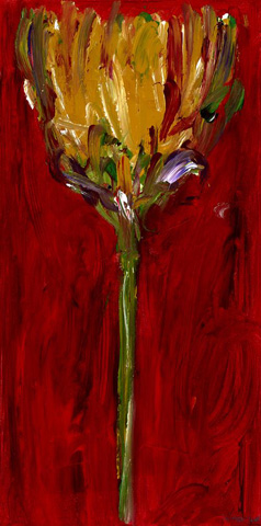 The Picture Source - Tulip I - MCK106A