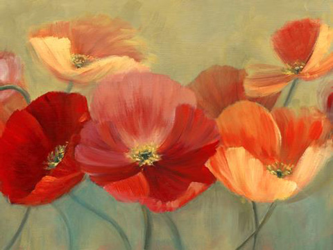 The Picture Source - Summer Poppies - MCP266