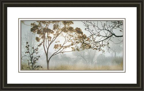 The Picture Source - Early Morning Mist II - S135