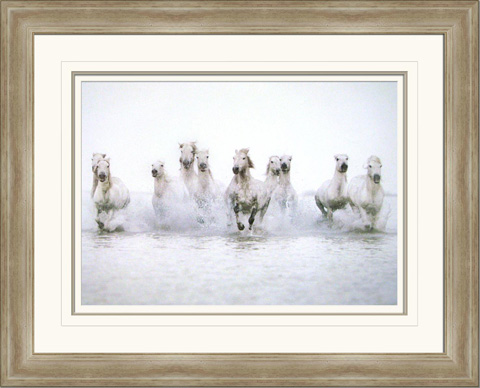 The Picture Source - White Horses I - S638A
