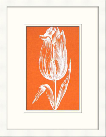 The Picture Source - Chromatic Tulips III - V122B