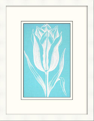 Picture Source, The - Chromatic Tulips IX - V122F